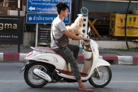 thailand_gallerythumb